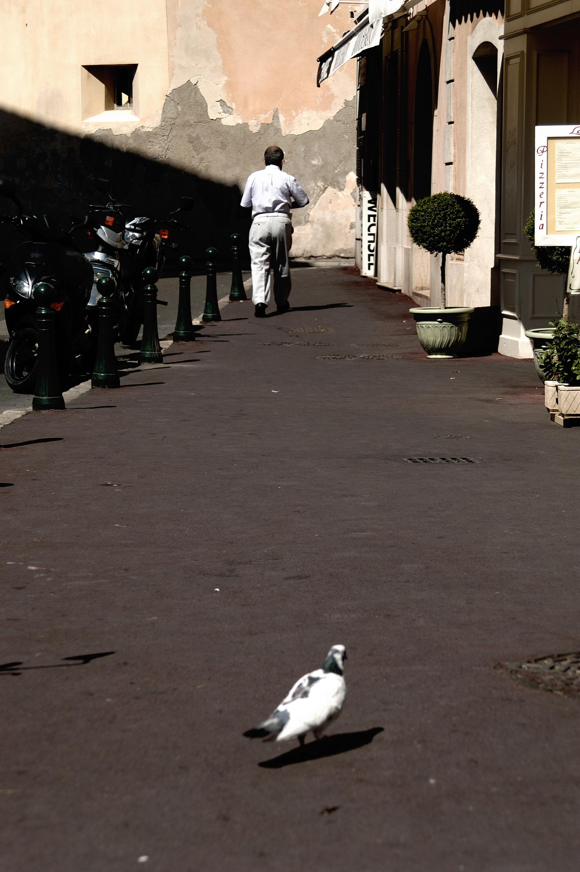 Alleingelassen, St. Tropez